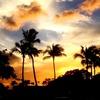 【マイルでハワイ旅行に行く】なんて夢。でも興味がある。