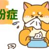 【花粉症】花粉の季節におすすめのファンデーション【肌荒れ】