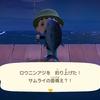 あつまれどうぶつの森 ロウニンアジを釣り上げる! 釣れない人は桟橋から魚のエサ連打作戦でいきましょう【画像・いきもの図鑑アプリ】