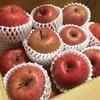 【ふるさと納税】まだ間に合う!コスパ最高!美味しいりんご(サンふじ)が5kgも入って6000円![山形県長井市]