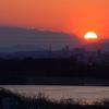 夕焼けと淀川と植物の写真:淀川河川公園枚方地区