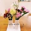 刺し子と花~部屋に花を飾るメリット~