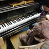 音楽教室のピアノ