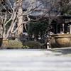 覚園寺(2017年1月)