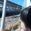 家族でフジプレミアムリゾートフォレストヴィレッジに宿泊してきました。標高が1000m近いなんて聞いてないぞ~前編~