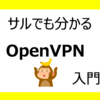 【サルでも分かる】OpenVPN入門