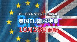 「12月12日総選挙の可能性が高まる」ハードブレグジットに備えよ!英国EU離脱特集