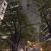 【自転車旅】ママチャリで神戸から東京へ行ってみた 最終話 〜箱根で遭難からのゴールか!??〜