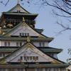 大阪城で桜を見にに行ってきました。海外の方でいっぱいで人気スポットだなと再度思いました!