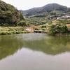 放生池(和歌山県海南)