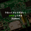 Raspberry Piで電子工作する (1 - pythonでLEDをチカチカさせる)