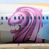 ETIHADの特別塗装機Boeing787-9