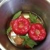 ブルガリア料理 パプリカの煮込み
