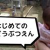 コロナ後初の動物園
