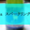 ド定番★アルパカスパークリングワイン★飲んだ