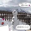 【長野 スキー場】白馬岩岳スノーフィールド★2020年2月11、12日ゲレンデレポ★雪降ったよ♪【スノーボード】