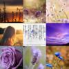 Twitter、アメブロ、Instagram、Facebookに作家「琴華」さんの詩をご紹介しました。
