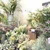 ≪本店3階» 好きなお花 プラスαにグリーンアイテムを♡!