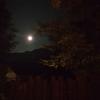 蠍座満月をこう過ごす