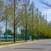 河川敷の公園