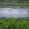 五月雨2008