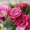 [写真]父がもらった花を試し撮り。神レンズのおかげで、イイ感じのボケ感が出せました。