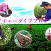 帯広・自己啓発・農業インターンに行ってきた!