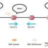MRAI とBGP Withdrawn とパケットロス