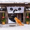 冬と言えば、温泉!温泉県といえば、大分県!車、電車で行こう!温泉県大分へ!雪見温泉みられるかも!