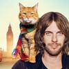 猫と人間が幸せになる映画「ボブという名の猫 幸せのハイタッチ」面白いですよ。