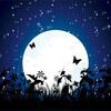 満月の浄化作用