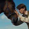 戦争の涙と動物の涙「戦火の馬」あらすじ・感想と評価