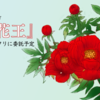 テキレボ御礼、そして金沢文フリへ『百花王』