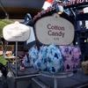 アナハイム・ディズニーランドリゾートへ行こう(雑記) / Trip to Disneyland Resort, Anaheim (Miscellaneous notes)