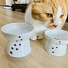 【猫学】短足マンチカンにぴったりな高さの食器