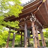 【京都】『智積院』に行ってきました。 京都観光 京都旅行 女子旅 旅気分