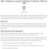 WSL2 は Windows10 1903および1909にも展開されるようです