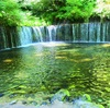 【旅行】軽井沢 白糸の瀧とびっくりするくらい当たる占い(軽井沢人生診断)