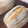 ライ麦パン(ホシノ酵母)
