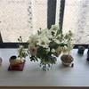 三月のお花