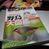 🦜野鳥の回【3】野鳥の種類を知る。野鳥大図鑑を買った