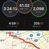 バースデーラン 41歳になったから41kmペース走でお祝いだ!