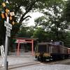 美濃赤坂界隈で「赤ホキ」を撮る その2 中部地方 撮り鉄遠征⑩