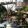 カフェ開業をデザイナーに頼むメリットとデメリットを費用やコスパの面から