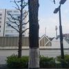 名古屋市を内部から腐食させるもの