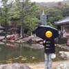 金剛福寺に初詣
