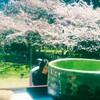 京都へ桜を撮りに行く🌸📷 ②