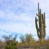 アメリカ南部の国立公園3選【モデルルートもご提案します】