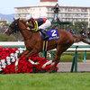 阪神ジュベナイルフィリーズ 2016 出走予定馬と予想オッズとデータ分析からのまとめ