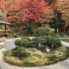小さな桂離宮「曼殊院門跡」の枯山水庭園を包む雅やかな紅葉